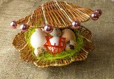 Το αυγό φραγκοκοτών αυγών κοτόπουλου και αυγών ορτυκιών βρίσκεται μαζί όπως τα μαργαριτάρια σε ένα κοχύλι σε έναν ξύλινο πίνακα στοκ εικόνες