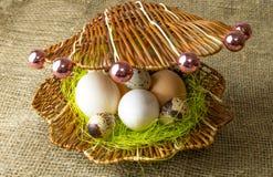 Το αυγό φραγκοκοτών αυγών κοτόπουλου και αυγών ορτυκιών βρίσκεται μαζί όπως τα μαργαριτάρια σε ένα κοχύλι σε έναν ξύλινο πίνακα στοκ εικόνες με δικαίωμα ελεύθερης χρήσης