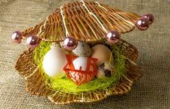 Το αυγό φραγκοκοτών αυγών κοτόπουλου και αυγών ορτυκιών βρίσκεται μαζί όπως τα μαργαριτάρια σε ένα κοχύλι σε έναν ξύλινο πίνακα στοκ εικόνα