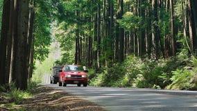 Το αυτοκίνητο περνά το μεγάλο φορτηγό στο δάσος απόθεμα βίντεο
