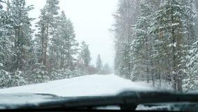 Το αυτοκίνητο στέκεται σε έναν χιονώδη δασικό δρόμο στις χιονοπτώσεις απόθεμα βίντεο