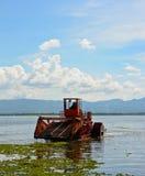 Το αυτόματο καθαρίζοντας σκάφος αφαιρεί το hyacin νερού Στοκ εικόνες με δικαίωμα ελεύθερης χρήσης