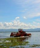 Το αυτόματο καθαρίζοντας σκάφος αφαιρεί το hyacin νερού Στοκ Φωτογραφία