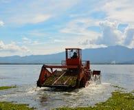 Το αυτόματο καθαρίζοντας σκάφος αφαιρεί το hyacin νερού Στοκ φωτογραφία με δικαίωμα ελεύθερης χρήσης