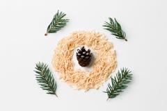 Το αφηρημένο επίπεδο σύνθεσης Χριστουγέννων βάζει με τους κλάδους κώνων και πεύκων έννοια δημιουργική Στοκ φωτογραφία με δικαίωμα ελεύθερης χρήσης