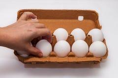Το Α μαζεύει με το χέρι ένα αυγό έξω Στοκ εικόνες με δικαίωμα ελεύθερης χρήσης