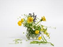 Το βάζο με τον τομέα άνοιξη ανθίζει σε ένα γκρίζο υπόβαθρο, κίτρινα και πορφυρά λουλούδια στοκ φωτογραφία