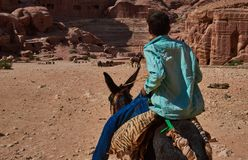 Το βεδουίνο παιδί οδηγά το γάιδάρο σας Petra Στοκ Εικόνες