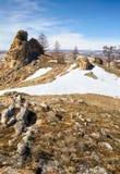 Το βελούδο λικνίζει κοντά Baikal στη λίμνη Στοκ φωτογραφία με δικαίωμα ελεύθερης χρήσης