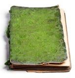 το βιβλίο απομόνωσε το λ&e Στοκ φωτογραφία με δικαίωμα ελεύθερης χρήσης