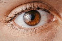 Το βλέμμα στο μάτι σας στοκ φωτογραφία