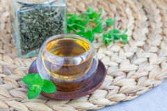 Το βοτανικό τσάι μεντών στο ασιατικό φλυτζάνι γυαλιού με φρέσκο peppermint και το τσάι εκσκάπτουν στο υπόβαθρο, οριζόντιος, διάστ Στοκ Εικόνες