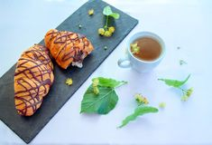 Το βοτανικό τσάι, τα άνθη δέντρων και η σοκολάτα croissants Στοκ Φωτογραφία