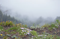 το βουνό αγνοεί Στοκ εικόνα με δικαίωμα ελεύθερης χρήσης