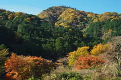 Το βουνό που φορά το φθινόπωρο στοκ εικόνα