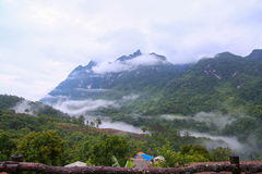 Το βουνό στη φύση και το δάσος, αίσθημα καλό μέσα χαλαρώνουν την ημέρα ή τις διακοπές στο βουνό, δασική βουνοπλαγιά στο χαμηλό να Στοκ Εικόνες