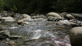 Το βράζοντας νερό σε έναν ποταμό βουνών φιλμ μικρού μήκους