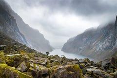 Το βρύο κάλυψε το πράσινο φιορδ Νορβηγία βράχων στοκ φωτογραφία