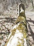 Το βρύο κάλυψε τον ξύλινο φράκτη με το βαρύ bokeh στοκ φωτογραφία