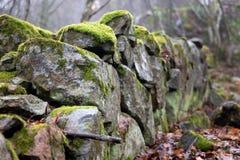 Το βρύο κάλυψε τον παλαιό θρυμματισμένο φράκτη πετρών στοκ φωτογραφία με δικαίωμα ελεύθερης χρήσης