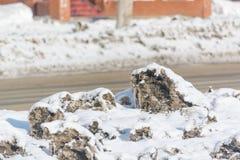 Το βρώμικο χιόνι λειώνει Το χιόνι ρίχνεται από το δρόμο Ο ήλιος πνίγει το χιόνι Στοκ Εικόνες
