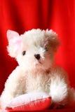 το β αντέχει teddy Στοκ εικόνες με δικαίωμα ελεύθερης χρήσης