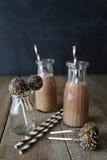 Το γάλα σοκολάτας με το κέικ σκάει και άχυρα Στοκ Εικόνα