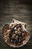 Το γαστρονομικό σκόρδο μαρινάρισε το φρέσκο εκκινητή πρόχειρων φαγητών tapas ελιών Στοκ Φωτογραφία