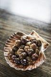 Το γαστρονομικό σκόρδο μαρινάρισε το φρέσκο εκκινητή πρόχειρων φαγητών tapas ελιών Στοκ Εικόνα