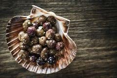 Το γαστρονομικό σκόρδο μαρινάρισε το φρέσκο εκκινητή πρόχειρων φαγητών tapas ελιών Στοκ Εικόνες