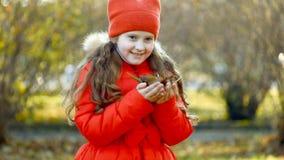 Το γελώντας μικρό κορίτσι ρίχνει τα φύλλα φθινοπώρου στον αέρα απόθεμα βίντεο
