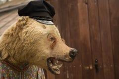 Το γεμισμένο ζώο αντέχει τη φρικτή κινηματογράφηση σε πρώτο πλάνο προσώπου Στοκ Εικόνα