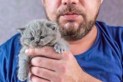 Το γενειοφόρο άτομο αγκαλιάζει ένα μικρό γατάκι στοκ εικόνα