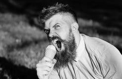 Το γενειοφόρο άτομο κρατά τον κώνο παγωτού ως μικρόφωνο Έννοια τραγουδιστών Το άτομο με τη γενειάδα και mustache να φωνάξει στο π Στοκ φωτογραφίες με δικαίωμα ελεύθερης χρήσης