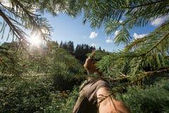 Το γενειοφόρο άτομο που παίρνει selfie στο δασικό άτομο θερινών πεύκων απολαμβάνει το κωνοφόρο άρωμα Αγαθά από τα phytoncides Στοκ Εικόνες