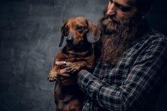 Το γενειοφόρο αρσενικό κρατά ένα καφετί σκυλί ασβών Στοκ Φωτογραφία