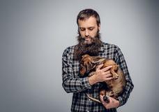 Το γενειοφόρο αρσενικό που ντύνεται σε ένα πουκάμισο καρό κρατά το σκυλί ασβών Στοκ Εικόνες