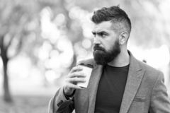 Το γενειοφόρο hipster ατόμων προτιμά ότι ο καφές παίρνει μαζί Ο επιχειρηματίας πίνει τον καφέ υπαίθρια Ξαναφόρτωμα της ενέργειας  στοκ φωτογραφία με δικαίωμα ελεύθερης χρήσης