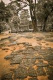 Το γιγαντιαίο δέντρο που καλύπτει το TA Prom και το ναό Angkor Wat, Siem συγκεντρώνει, ασβέστιο Στοκ Φωτογραφίες