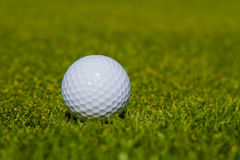 Το γκολφ είναι ένας αθλητισμός που είναι δημοφιλής σε όλο τον κόσμο και το αγαθό για την υγεία στοκ εικόνες