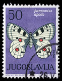 Το γραμματόσημο που τυπώνεται πεταλούδα στη Γιουγκοσλαβία παρουσιάζει στοκ εικόνες με δικαίωμα ελεύθερης χρήσης
