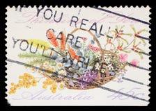 Το γραμματόσημο που τυπώνεται στην Αυστραλία παρουσιάζει στη δέσμη των λουλουδιών με τη σκέψη περιγραφής ` σας `, ειδικές περιπτώ Στοκ εικόνα με δικαίωμα ελεύθερης χρήσης