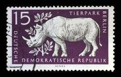 Το γραμματόσημο που τυπώνεται στην ΟΔΓ παρουσιάζει ρινόκερο, Βερολίνο, γερμανικός ζωολογικός κήπος Στοκ Εικόνα