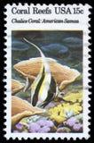 Το γραμματόσημο που τυπώνεται στις ΗΠΑ παρουσιάζει κοραλλιογενείς υφάλους, κοράλλι καλύκων, αμερικανική Σαμόα Στοκ εικόνες με δικαίωμα ελεύθερης χρήσης