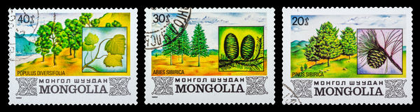 Το γραμματόσημο Στοκ εικόνα με δικαίωμα ελεύθερης χρήσης