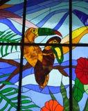 το γυαλί λεκίασε το τροπικό παράθυρο Στοκ Εικόνα