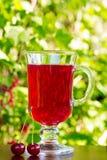 Το γυαλί με το σκούρο κόκκινο χυμό κερασιών και κεράσια σε ένα φυσικό υπόβαθρο Στοκ φωτογραφία με δικαίωμα ελεύθερης χρήσης