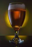 το γυαλί μπύρας απομόνωσε το λευκό Στοκ Εικόνες