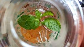Το γυαλί τσαγιού μεντών πίνει το φύλλο πάγου τροφίμων Στοκ φωτογραφία με δικαίωμα ελεύθερης χρήσης