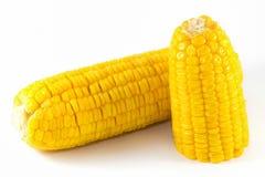 Το γλυκό καλαμπόκι βράζει έτοιμο για τρώει Στοκ φωτογραφίες με δικαίωμα ελεύθερης χρήσης